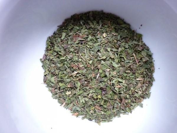 Krauseminze (menthae crispae) gerebelt (Ägypten)